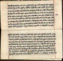 Sanskrit_text